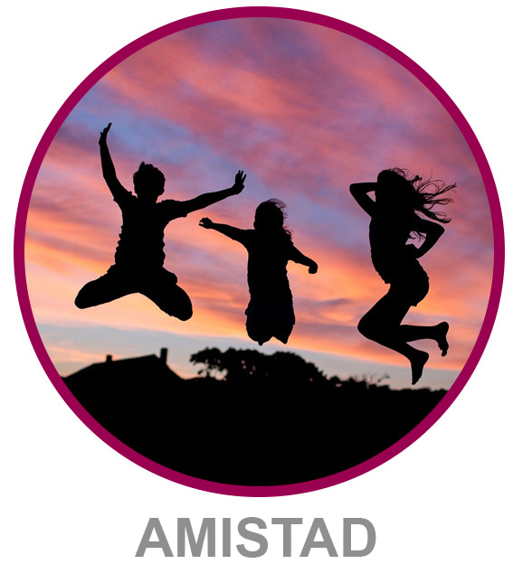 Amistad Collection